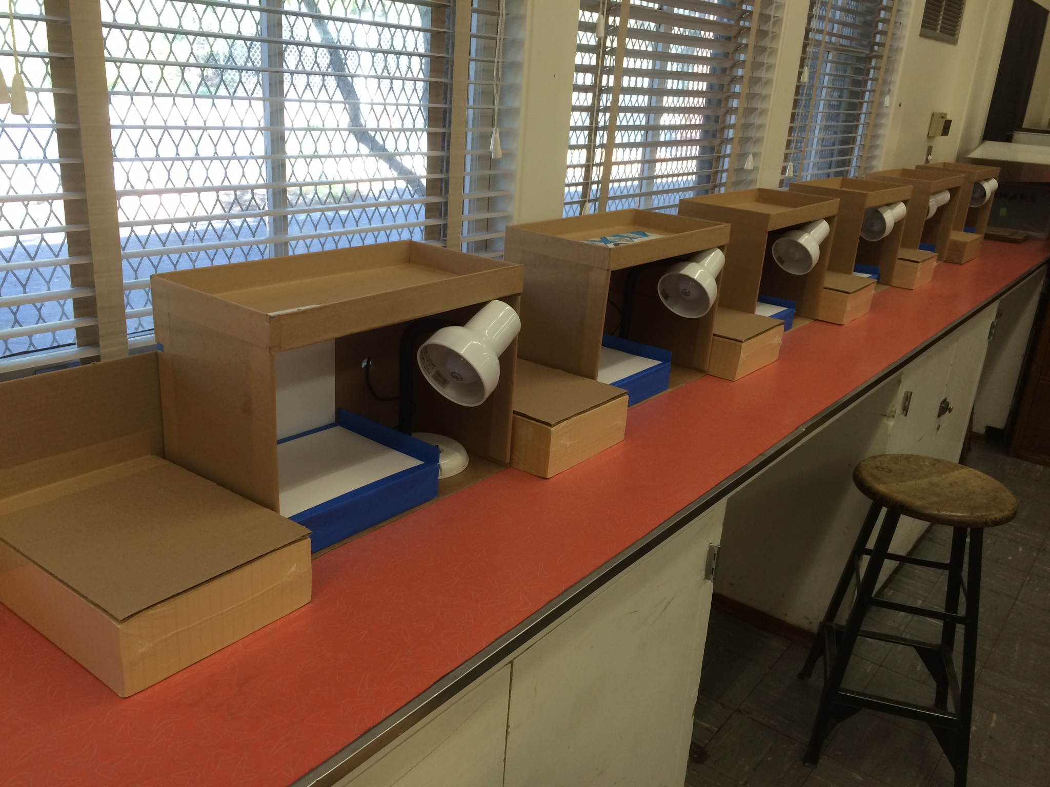 Diy cardboard box animation stand ver 3 cartooning for Animation stand